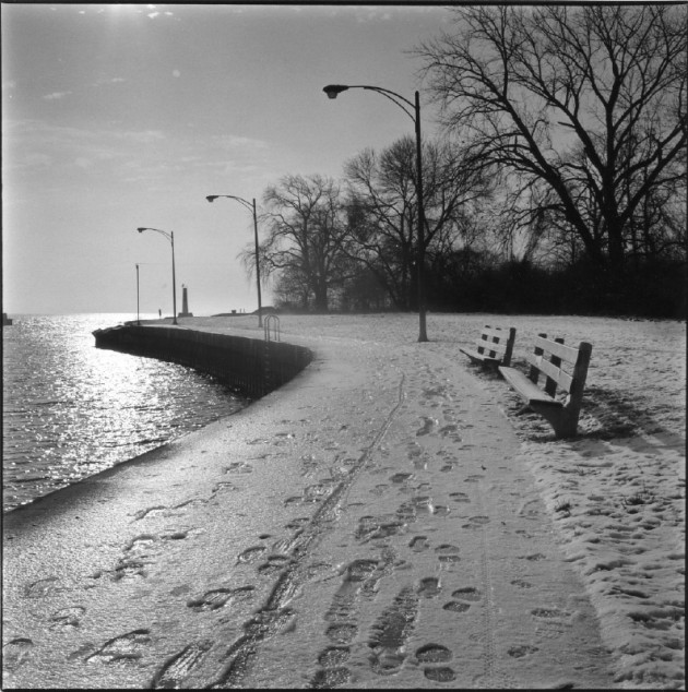 Montrose_benches